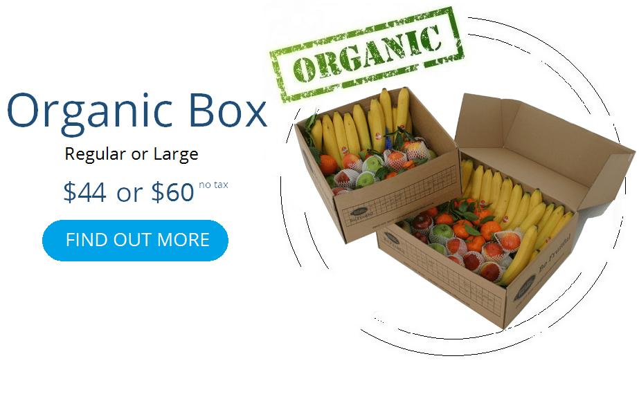 contact organic1