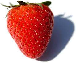 fruitfull order