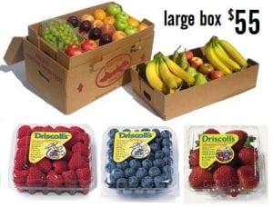 large box1.1